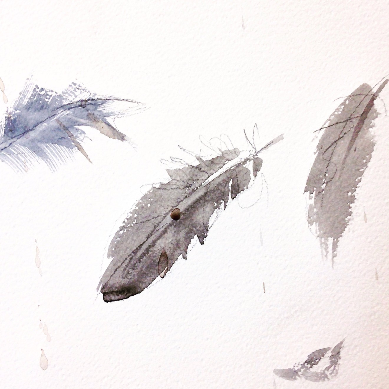 Andrea Mancini, FourtyFive Feathers, 2015, watercolor.